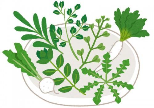 春の七草が皿の上に全部のっている
