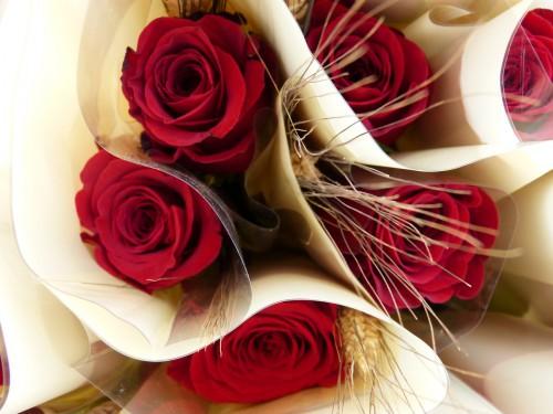 赤い薔薇一輪と麦の穂の花束がたくさん