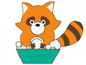 食器を洗うアライグマ
